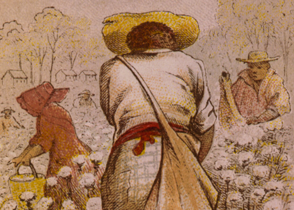 Cotton pickers, 1800s.